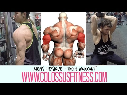 Mens Physique Arms Workout | P2 Triceps