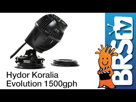Hydor Koralia Evolution 1500GPH Flow Dynamics