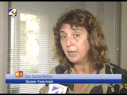 Denuncia contra Ancap La opinión de la diputada Cecilia Bottino
