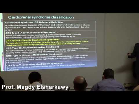 ESNT-CNE May 2014.  Cardiorenal Syndrome Prof  Magdy Elsharkawy