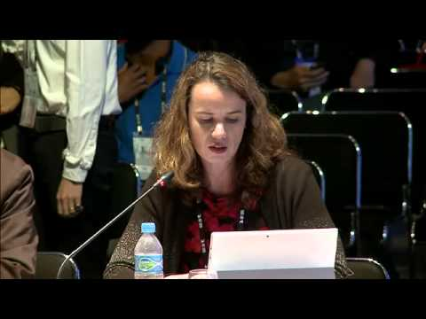 IGF Intersessional Work: Policy Options and Best Practices for Connecting the Next Billion
