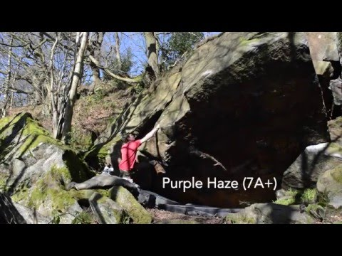 Purple Haze & Master Kush at Rivelin