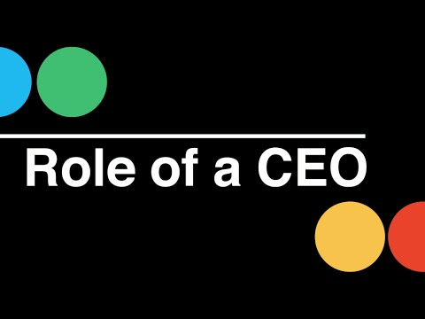 Startup CEO: Role of a CEO