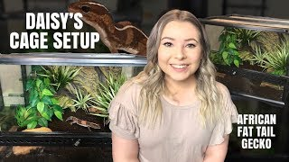 SETTING UP MY AFRICAN FAT-TAILED GECKOS CAGE! (Step By Step!) by Emma Lynne Sampson