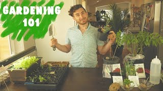 The Simple Guide to Growing Your Own Food by Brothers Green Eats