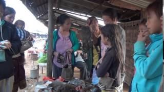 Family Trip To Laos Pt. 1