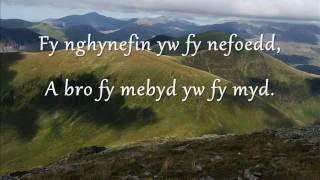Welsh Language Music / Cerddoriaeth Cymraeg