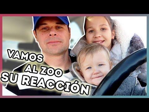 Nos vamos al Zoo   Erika se sube a una Tirolina  Un camaleón vigila a Daniela  Yippee Family