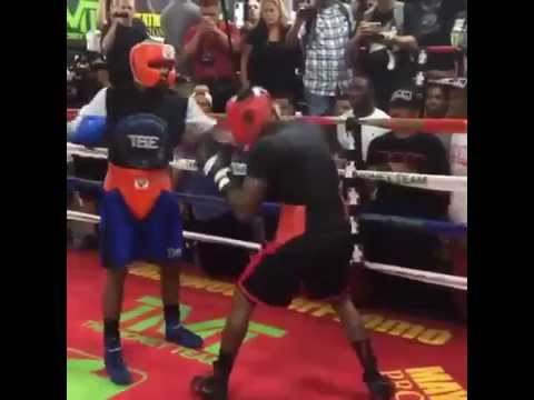 Floyd Mayweather destroys his sparring partner [Training for fight against Andre Berto] (видео)