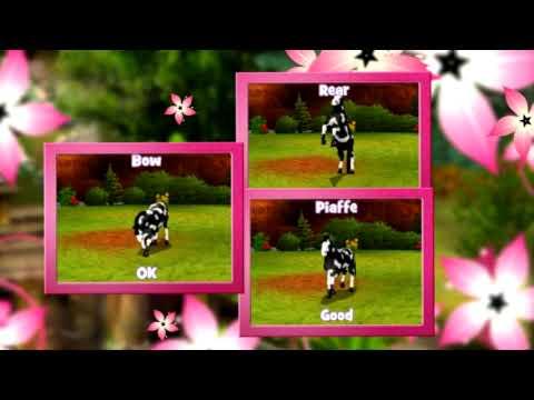 Cheval & Poney : Best Friends Mon Cheval Nintendo DS