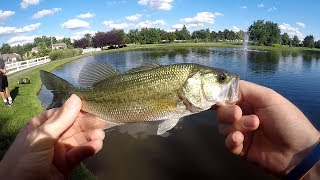 """This is part two of my friend losing so many fish lol!!!!!!!! But overall it was a great day to go bass fishing and we ended up with a couple of nice fish!!!!!!MUSIC- Spike vibes https://www.youtube.com/channel/UCLY3kskbNAeDl3utrSfccJA/videosLURES I USEStorm Live kicking Minnow-https://goo.gl/CbMb6MMatzuo Ikari lipless crankbait- https://goo.gl/RBPTdyStorm 3"""" Wildeye Bluegill-https://goo.gl/APLKxCDUCK LURE-https://goo.gl/jMYCz1SUNFISH LURE-https://goo.gl/GhTpRcDOUBLE PLOPPER- https://goo.gl/lVmOaUROD AND REELSMACH 1 Speed Spool Combo- https://goo.gl/ibmLGlMACH 2 REEL- https://goo.gl/th3A2yGhost Ducket rod- https://goo.gl/G0upkPUgly Stick Combo- https://goo.gl/1kLk7mCamera GearGo Pro Hero 5- https://goo.gl/eUnDgcCannon 70 D with lens- https://goo.gl/hxAeuu*above are amazon associate links*"""
