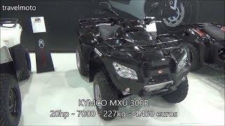 6. The KYMCO MXU 300i ATV (2017)