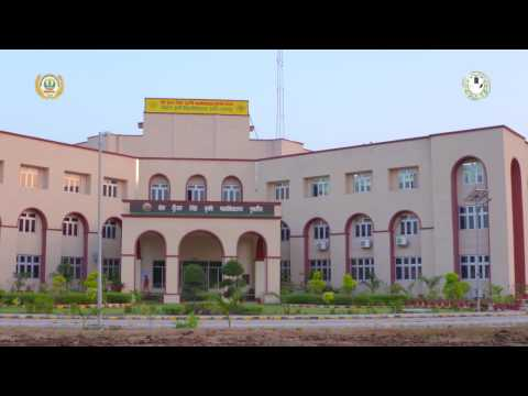 Journey of Veer Kunwar Singh College of Agriculture (Dumraon Buxar)
