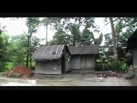 Beauty of Bangladeshi Village