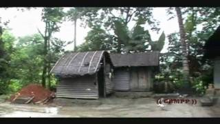 Beauty of Bangladeshi Village full download video download mp3 download music download