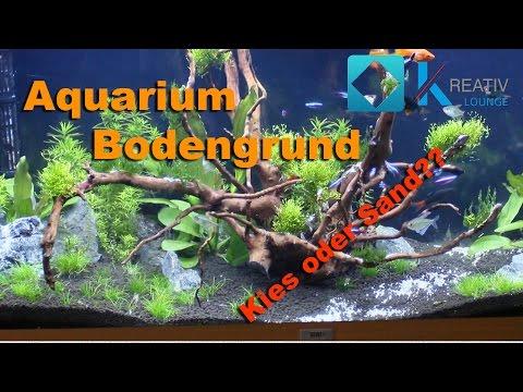 Der richtige Bodengrund für dein Aquarium   Kies oder Sand??