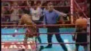Funny Boxing Knockout