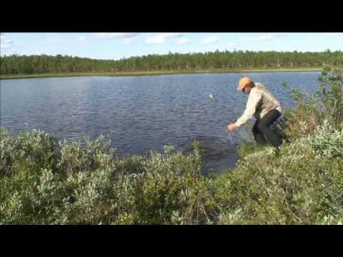 Lars Monsen - Ett År I Fisk (nordkalotten 365 kavalkade)