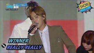 Video [HOT] WINNER - REALLY REALLY, 위너 - 릴리릴리 Show Music core 20170729 MP3, 3GP, MP4, WEBM, AVI, FLV Juni 2018