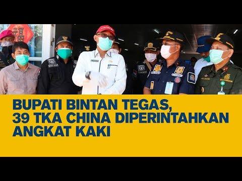 Bupati Bintan Tegas, 39 TKA China Diperintahkan Angkat Kaki