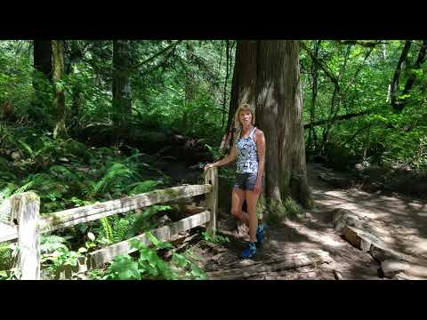 Best Hiking Stretch for The Back and Hips