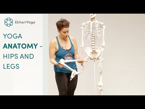 Yoga Anatomy - Anatomical insight on the hip and knee joint with Jennilee Toner (видео)