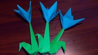 Квітка крокус (пролісок) з паперу своїми руками (орігамі)В цьому відео ми з Вами дізнаємося, як зробити паперову квітку крокус. Робити її легко. Її зможе зробити кожен. Просто повторюйте за нами!І, по секрету кажучи, квітка крокус згодиться, як подарунок мамі на 8 березня, День народження, ювілей, професійне свято. Але й не тільки мамі, ще сестрі, бабусі, подрузі, вчительці тощо.Опис відео:00:01 Привіт усім! У цьому відео ми зробимо квітка крокус (або пролісок).00:08 Нам знадобиться 2 аркуша паперу - зелений і світло-синій (блакитний)00:16 Робимо потрібні квадрати паперу для складання фігурки01:06 Робимо бутон квітки10:00 Складаємо стебло13:16 Вставляємо стебло квітки в бутон13:43 Паперова квітка Крокус своїми руками готова!Підписуйтесь на наш YouTube канал «Розумна дитина»,щоб першими дізнаватись про нові відео:https://www.youtube.com/channel/UCpKlZnl88hGmT363eG4mtEgЯк зробити лілію своїми руками (аплікація з паперу): https://youtu.be/Xqn53jbunBQОрігамі тюльпан з паперу (квітка з паперу) майстер клас: https://youtu.be/IAhIg3XJqU8