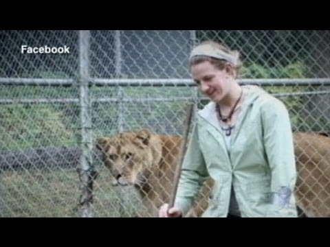 Lion Attack Victim Was on Phone When Lion Broke Free, Attacked