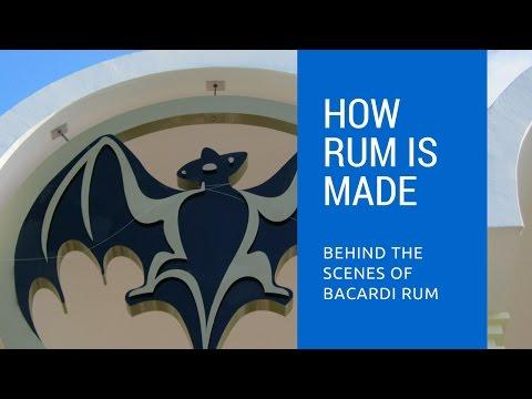 Behind the scenes in Puerto Rico at the Bacardi Rum Distillery
