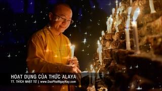 Thành Duy Thức Luận 11 (2008) - Hoạt dụng của thức Alaya - TT. THÍCH NHẬT TỪ