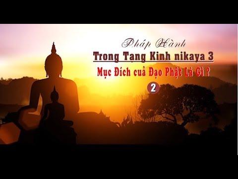 Pháp Hành Trong Tạng Kinh NIKAYA 3 - Mục Đích của Đạo Phật Là Gì 2 ?