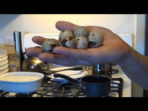 How To Hard Boil Quail Eggs