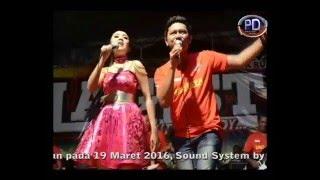 Video Hanya Satu - Rina Amelia & Budi MC - Lagista Live PG Lestari Patianrowo Nganjuk 2016 MP3, 3GP, MP4, WEBM, AVI, FLV November 2017