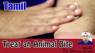 How to Treat an Animal Bite - First Aid in Tamil