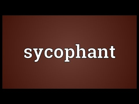 Sycophant Meaning
