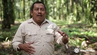 Testimonio Vidal Hernández