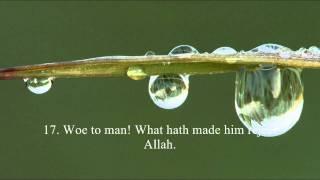 Surah 'Abasa (80) - Sheikh Adel Rayyan - Abese Suresi.mp4