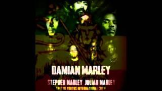1 - Damian Marley feat. Black Am I, Biggz General, Jo Mersa & Illestr8  - The Living Breed