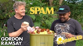 Video Gordon Ramsay Makes SPAM Scrambled Eggs in Hawaii | Scrambled MP3, 3GP, MP4, WEBM, AVI, FLV Agustus 2019