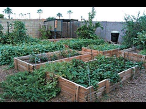 Planting Raised Bed Garden for Highest Yield