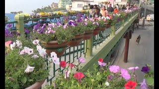 Gangtok India  city pictures gallery : Gangtok cleanest city in northeastern India