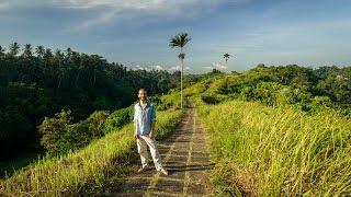 Download Lagu Highlights of Ubud, Bali Mp3