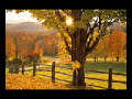 Dawn - Tie A Yellow Ribbon Round The Old Oak Tree - Oldies