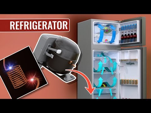 How Does A Refrigerator Work ?
