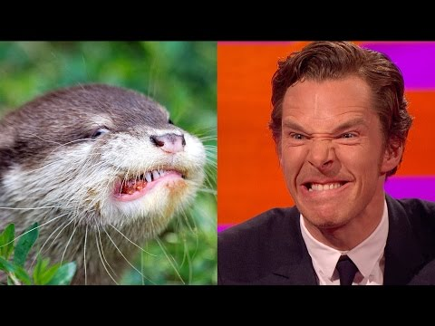 Graham Norton Show with Otter Look A Like Benedict Cumberbatch