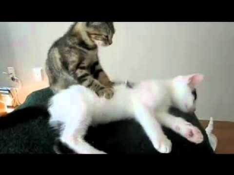 Una bonita muestra de amor es este masaje (video visto 160.000 veces)