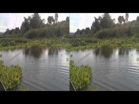 Pescaria em Arealva-Sp 20/12/2012