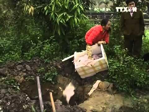Việt Nam Xanh - Nội tạng thối 'đi' máy bay trót lọt (Hình 4).