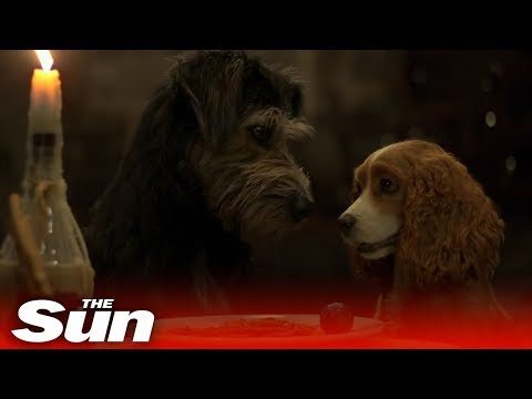 Lady and the Tramp (2019) Official Trailer