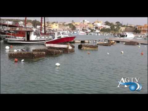 I danni del marrobbio a Lampedusa NewsAgtv